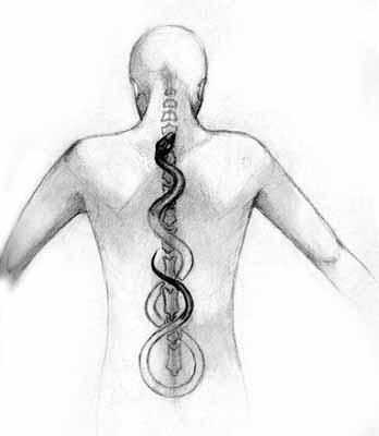 Il percorso della Kundalini lungo la nostra schiena