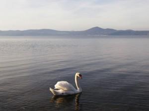 lago_di_bracciano